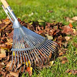 Zahradní práce a práce kolem domu